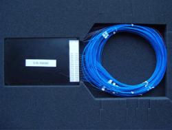 1n-module-wdm