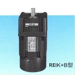 REIK-3-Phase-Induction-Motors