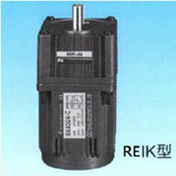 Reik Single Phase Induction Motors