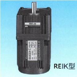REIK-Single-Phase-Induction-Motors