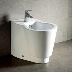 bathroom bidet