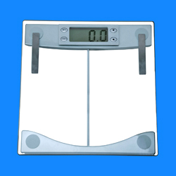 body fat and water scales