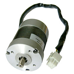 Brushless DC Motors
