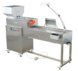 caspule inspection machines