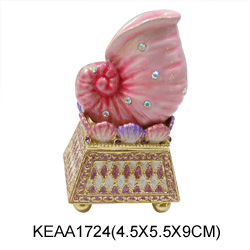 conch jewelry boxes