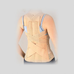 deluxe back support belt