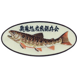 fish conservation society embroidered patches
