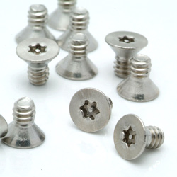 flat head tamperpoof screw