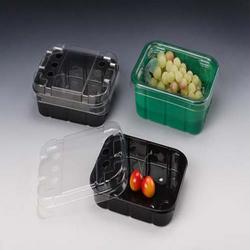 fresh food trays