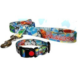 full-color-dog-collar-matching-lead