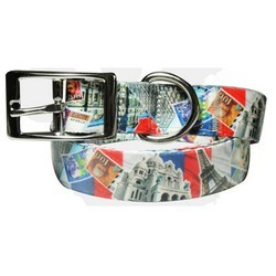 full-color-dog-lead--matching-collar-france-series