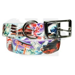 full-color-dog-lead--matching-collar-japan-series