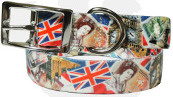 full-color-dog-lead--matching-collar-uk-series