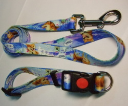 full-color pet leash & collar