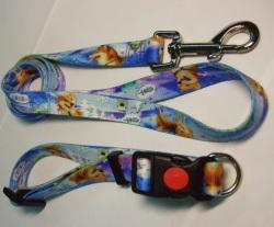 full-color pet leash & collar