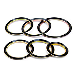 gamma ring seals series