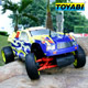1/5 Scale 2WD Gas Powered Truggies