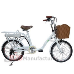 20-inches-Lady-Electric-Bike