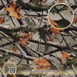 Jungle-WTP-Films