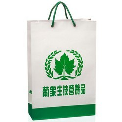 Laminated-Paper-Shopping-Bag-with-Rope-Handles1
