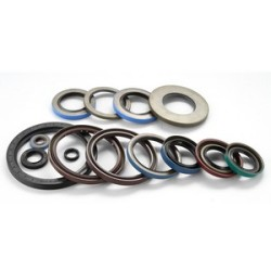 Main-Lip-Sticky-PTFE-Type-Oil-Seal