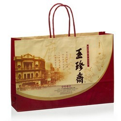 Paper-Shopping-Bag-with-Twisted-Paper-Handles1