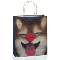 Paper-Shopping-Bag-with-Twisted-Paper-Handles2