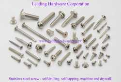 Stainless-Steel-Screw