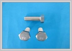 Titanium-Gr-2-Hexagon-Head-Screws