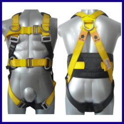Waist-Safety-Belt
