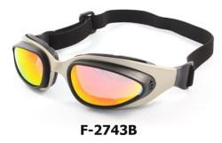 bike-goggles