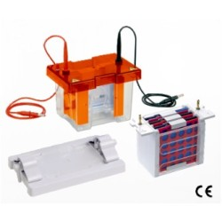 system-for-Mini-Vertical-Electrophoresis-Blotting