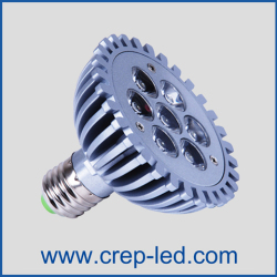 led-globe-bulbs