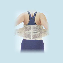 mesh back protective support