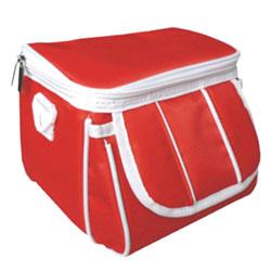 ndsi carrying bag