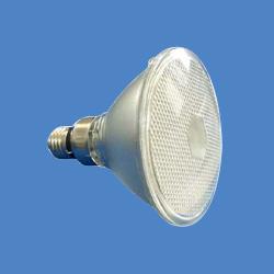 par 38 shoot lamps