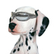 Pet Goggles  ( Pet Products Supplies)