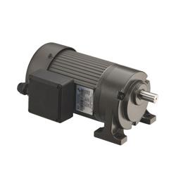 precision gear motor