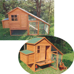 rabbit or chicken house