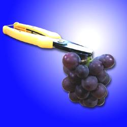 snip grip pruners
