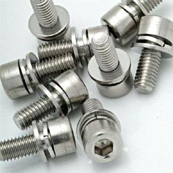 Socket Head Cap Screw W/Din 6905 And Din 6902 Washers (2